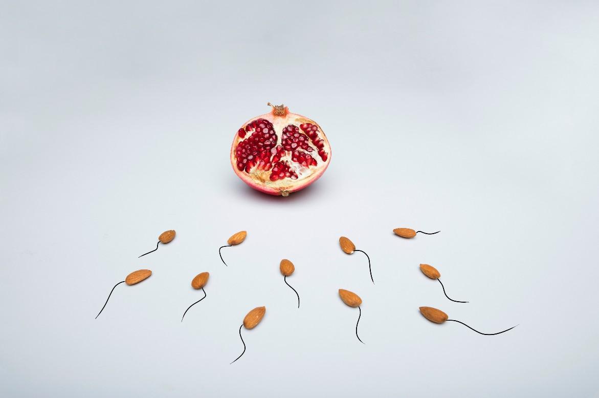 Spermier i form av frukt